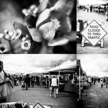Joshua Tree Farmer's Market, Joshua Tree, Joshua Tree photographer, Yucca Valley Photographer,
